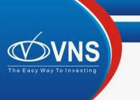 VNS Finance