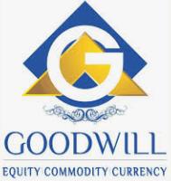 Goodwill Wealth