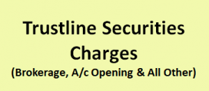 Trustline Securities Charges