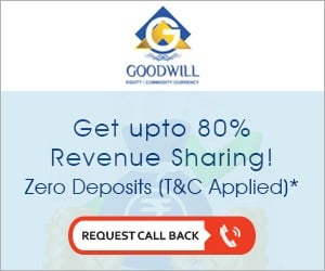 Goodwill Wealth Franchise offer