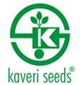 Kaveri Seeds Buyback
