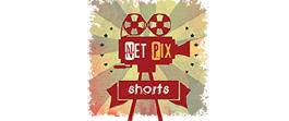 Net Pix Shorts Digital Media IPO