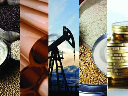 Become a Successful Commodity Trader