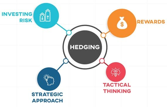 Hedging or Hedging Strategies